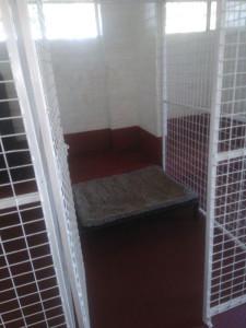 block-1-kennels
