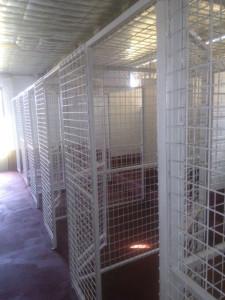 block-3-kennels